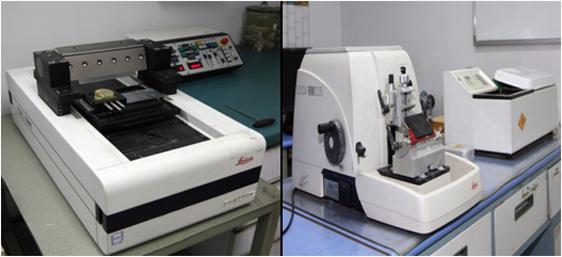rm2235 石蜡切片机